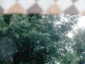012_20110524083849.jpg