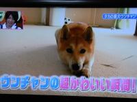 044_20110807032057.jpg