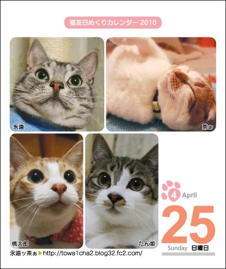 猫友日めくりカレンダー2010-1