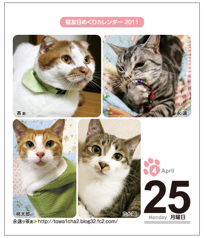 猫友日めくりカレンダー2011