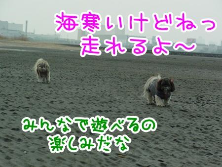 20110206-197.jpg