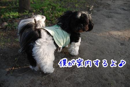 DSC_5167.jpg