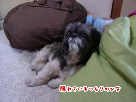 RIMG2146.jpg