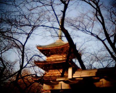 上野寛永寺・五重塔