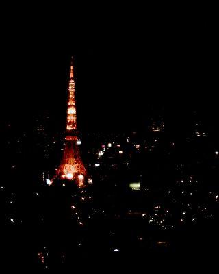 東京タワー夜景 20100130