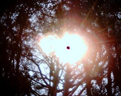 Entryで太陽
