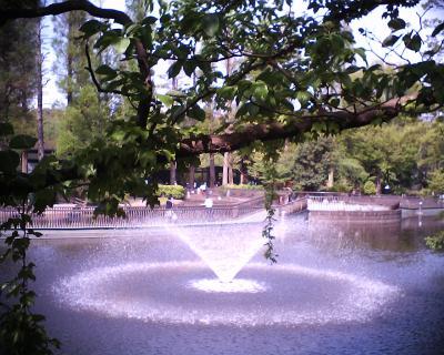 噴水・井の頭公園:R2改