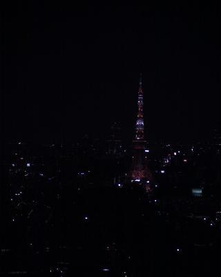 東京タワー夜景なのに:R2