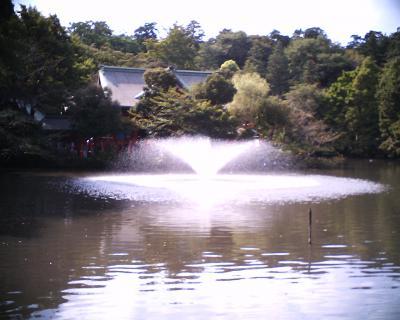 井の頭公園 噴水:R2