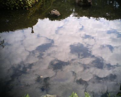 池の中の秋:R2