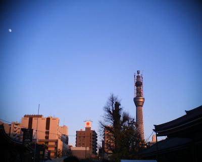 スカイツリー・五重塔に十三夜:R2