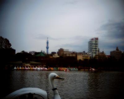 不忍池で東京スカイツリー:Entry