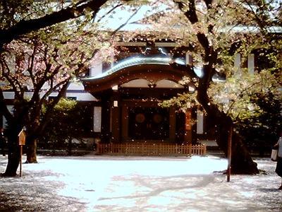 桜吹雪 その2:Entry