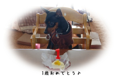 2009_1219_152313(2).jpg