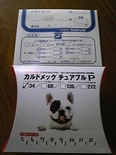2010_0427_1144225.jpg