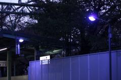 091222_KQgumyoji_blue-light.jpg