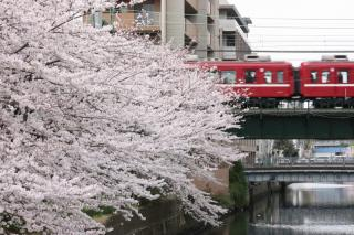 100403_KQ-Umekazakibashi_2.jpg