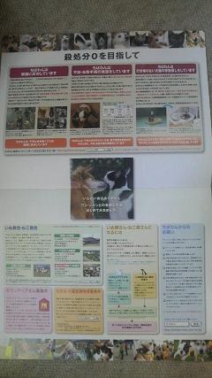 2010110509300002.jpg