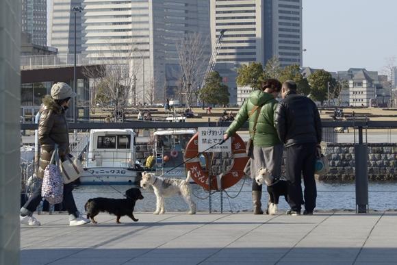 横浜寸景-17_R