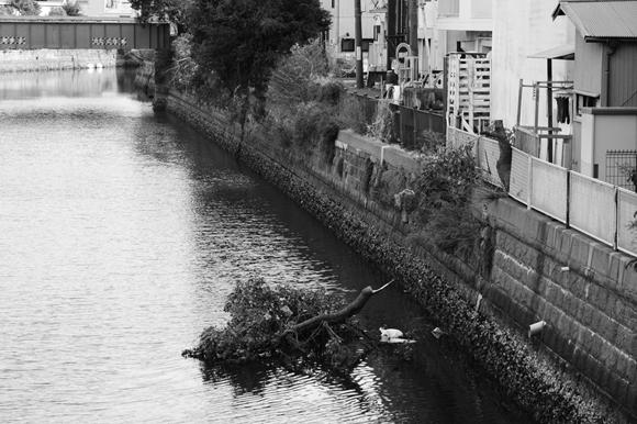 川沿いの街-6_R