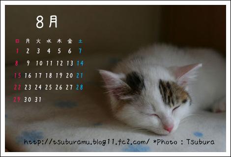 2010.8カレンダー