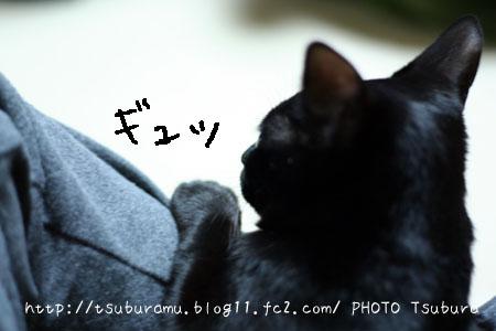 IMG_3782.jpg