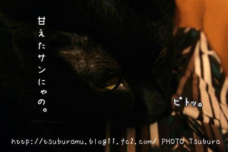 IMG_6304.jpg