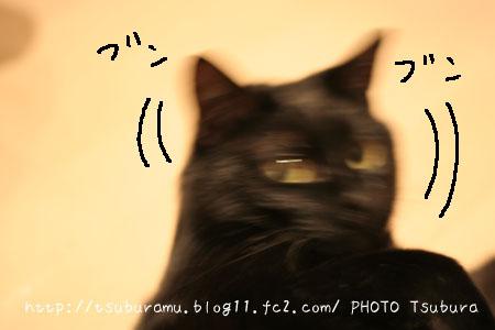 IMG_6358.jpg