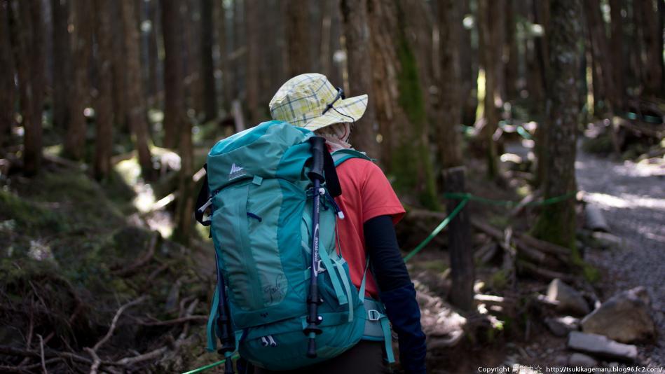森を歩く山女