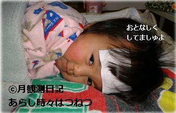 20120331tsuki1.jpg