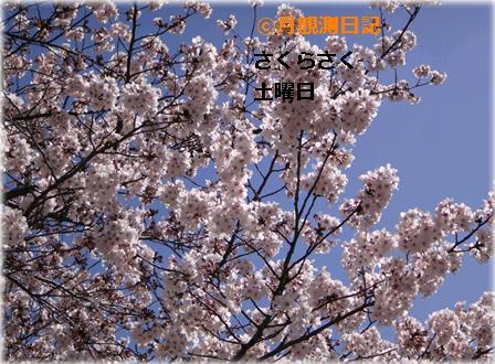 20120407tsuki1.jpg