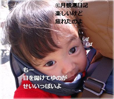20120407tsuki2.jpg