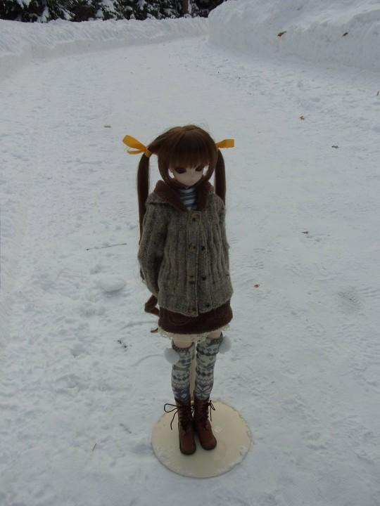 百合が原 冬08