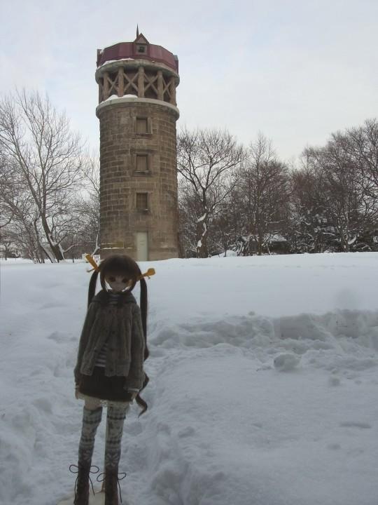 百合が原 冬20