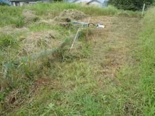 草刈り1‐1