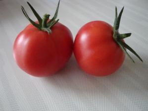 フルーツ トマト