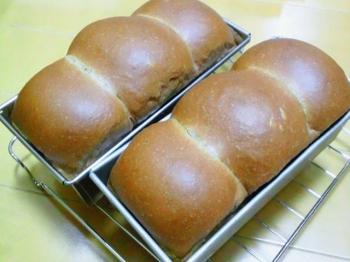 ミニココア食パン2