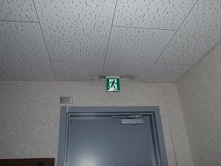 P3110107.jpg