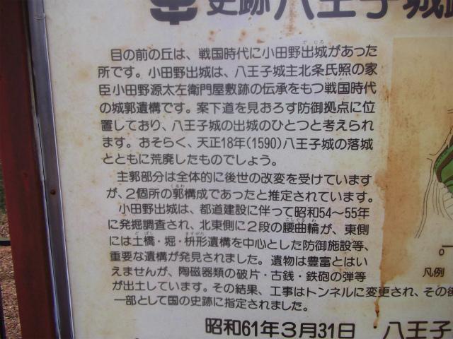 022_20130208113158.jpg