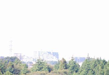 IMGP0714.jpg