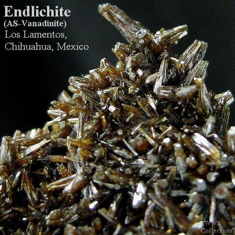 含砒バナジン鉛鉱_メキシコ1