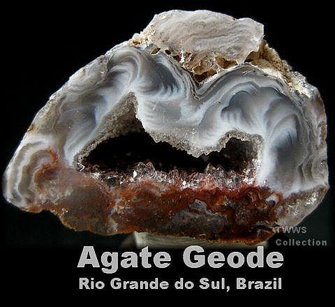 晶洞_ブラジル2