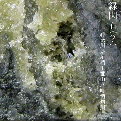緑閃石_酒匂川1