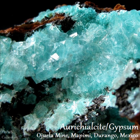 水亜鉛銅鉱&石膏_メキシコ1