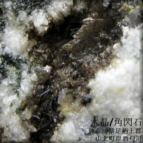 水晶&角閃石_酒匂川1