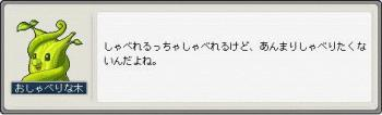 Maple091225_004351.jpg