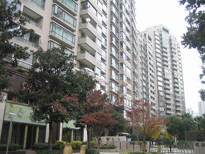 2009.冬上海 010