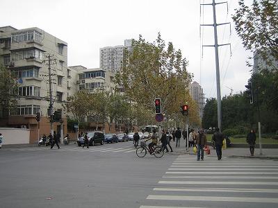 2009.冬上海 013