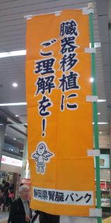 20101009135057.jpg