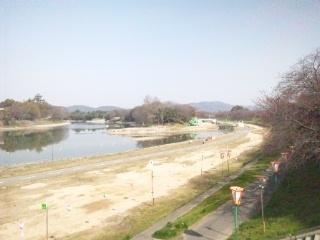120402 旭川 さくらカーニバル 蕾①